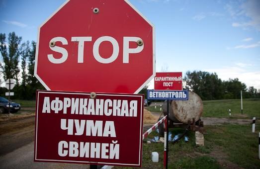 Животноводам Одесской области компенсируют убытки от свиной чумы