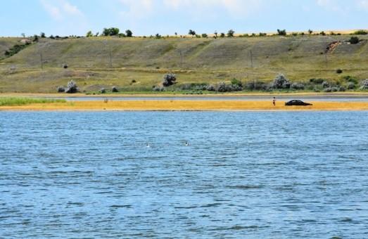 Соленость воды в Тилигульском лимане упала, а ее уровень поднялся