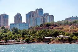 Лесоповал: в Одессе вырубили сотни деревьев в курортной зоне