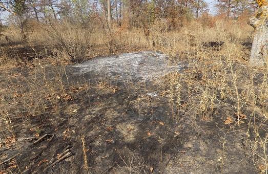 Лакарен заявил о поджоге - полиция поджог не подтвердила