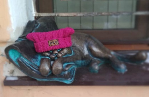 Одесским котикам повезло с шарфиками (ФОТО, ВИДЕО)