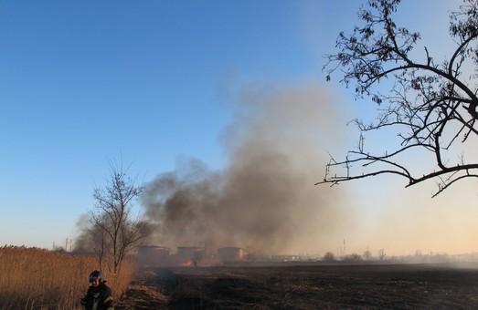 В Одессе на Пересыпи горел камыш неподалеку от нефтебазы (ФОТО)