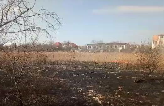 Прямо сейчас: на Каролино-Бугазе горит камыш (ФОТО, ВИДЕО)