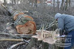 В Одессе «Антарктику» незаконно готовят к застройке (ФОТО)