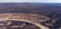 Сгорела заповедная Тарутинская степь в Одесской области (ФОТО, ВИДЕО)