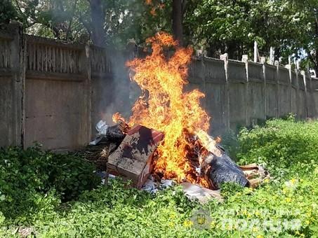 В Измаиле сожгли наркоту (ФОТО)