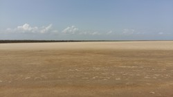 На юге Одесской области водоемы превращаются в пустыни (ФОТО)