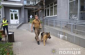 Правоохранители назвали основные версии гибели нардепа Тымчука