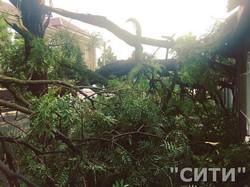 Ливень и шквальный ветер обрушились на Измаил