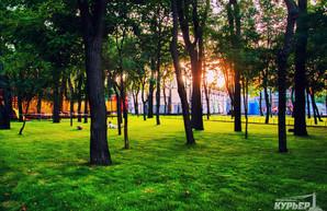 Одесситов приглашают принять участие в экологических акциях