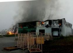 В Одесской области пожар уничтожил цех по переработке чеснока
