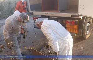 Стала известна причина повышенного радиационного фона в Одесской области