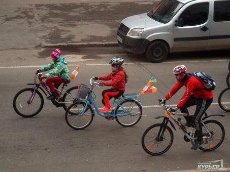 В Одессе создадут велосипедную трассу от центра до жилмассива Таирова