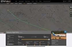 11 граждан Украины погибли в результате крушения самолёта МАУ в Иране