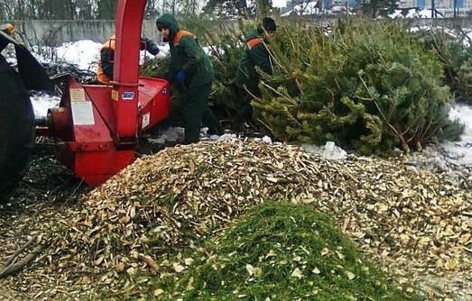 20 тысяч новогодних ёлок обменяли в Одессе на конфеты и сладости