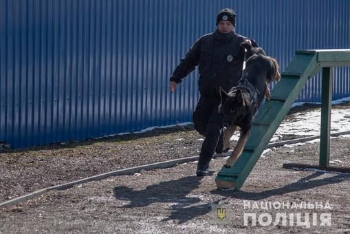 В Одессе открылся модернизированный кинологический центр