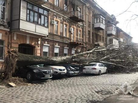 Глава Одесской ОГА рассказал, где находился во время урагана «Юля»