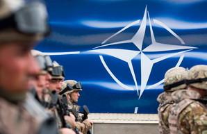 """Мнение дилетантов о вступлении Украины в НАТО или """"Іноді краще жувати, ніж говорити"""""""
