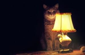 Почти 600 домов в Одессе сегодня остались без света