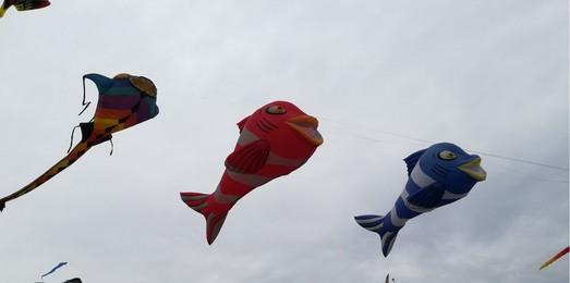 Фестиваль воздушных змеев прошел в Одесской области